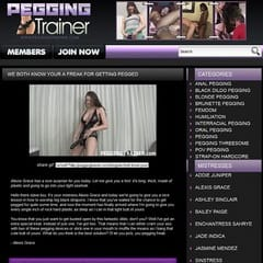 Pegging Trainer