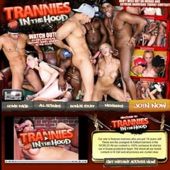 Trannies in the Hood